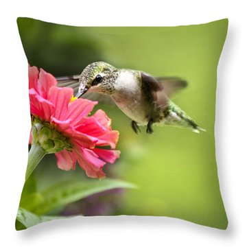 Botanical Hummingbird Throw Pillow by Christina Rollo