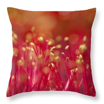 Throw Pillow featuring the photograph Bottle Brush Stamens by Chris Scroggins