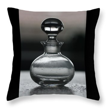 Bottle Throw Pillow