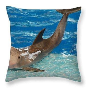 Bottlenose Dolphin Throw Pillow by DejaVu Designs