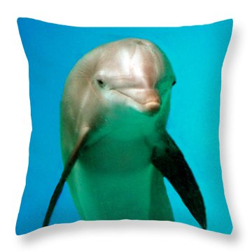 Bottlenose Dolphin Portrait Throw Pillow