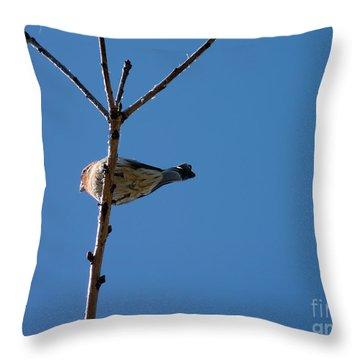 Throw Pillow featuring the photograph Bottoms Up by Meghan at FireBonnet Art