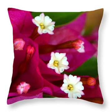 Throw Pillow featuring the photograph Bougainvillea- Fuschia by Darla Wood