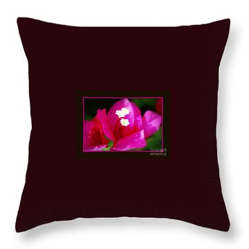 Throw Pillow featuring the photograph Bougainvillea Within A Border by Leanne Seymour