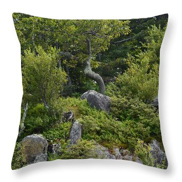 Throw Pillow featuring the photograph Boulder Green by Cathy Shiflett
