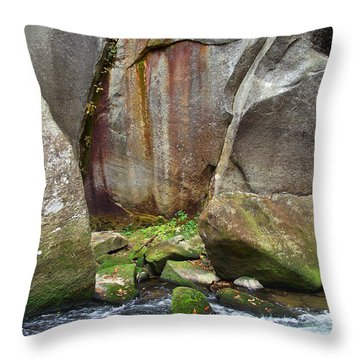 Boulders By The River Throw Pillow