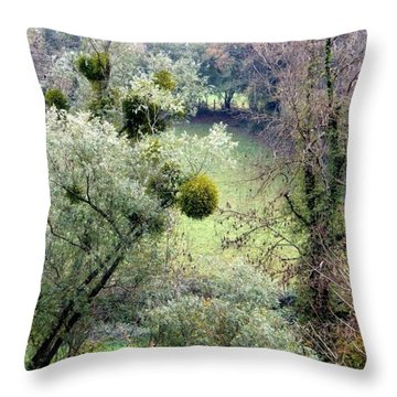 Mistletoe Ball Throw Pillow
