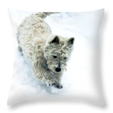Bounding Baby Boy Throw Pillow