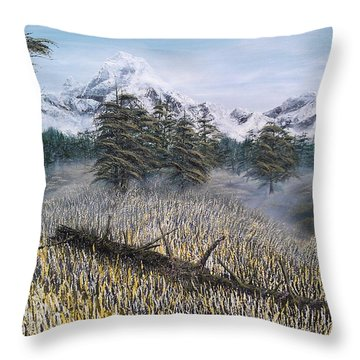 Boundless Throw Pillow by Pheonix Creations
