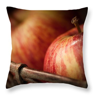 Bountiful Throw Pillow by Amy Weiss