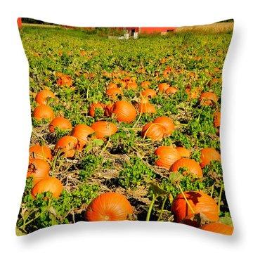 Bountiful Crop Throw Pillow