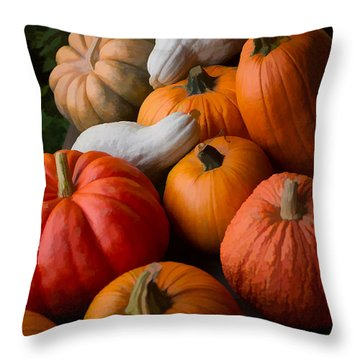 Bountiful Harvest Throw Pillow by Michael Flood