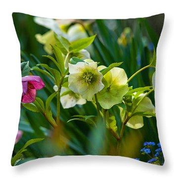 Throw Pillow featuring the photograph Bouquet Of Lenten Roses by Jordan Blackstone