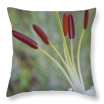 Bouquet On Bokeh Throw Pillow