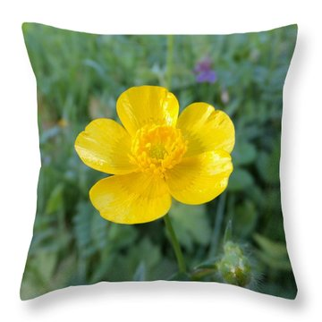 Bouton D'or Throw Pillow