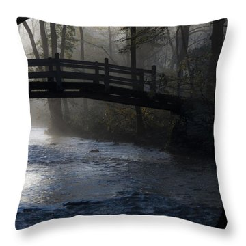 Bow Bridge At Valley Forge Throw Pillow by Bill Cannon