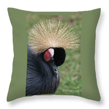 Bow Your Head Throw Pillow by Judy Whitton