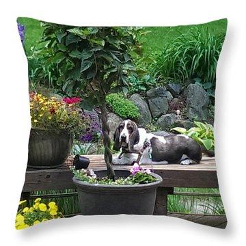 Bowie In The Garden Throw Pillow