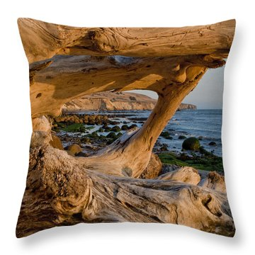 Bowling Ball Beach Framed In Driftwood Throw Pillow by Patricia Sanders