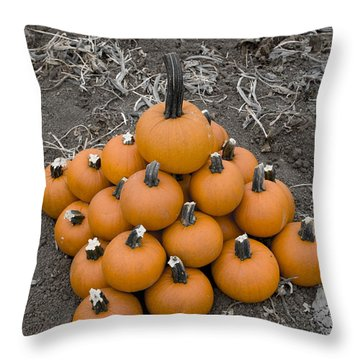 Bowling For Pumpkins Throw Pillow by David Millenheft