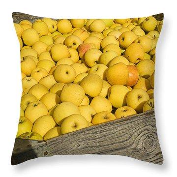 Box Of Golden Apples Throw Pillow by Garry Gay