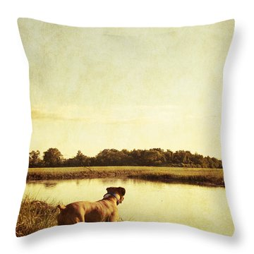 Boxer Dog By The Pond At Sunset Throw Pillow by Stephanie McDowell