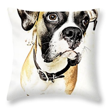 Throw Pillow featuring the photograph Boxer Dog Poster by Peter v Quenter