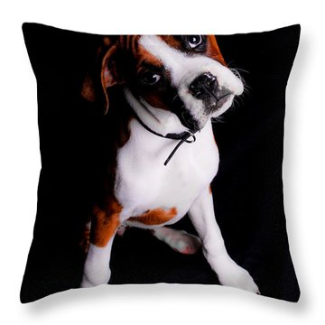 Boxer Pup Throw Pillow by Jt PhotoDesign