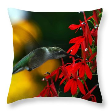 Boy Am I Hungry Throw Pillow