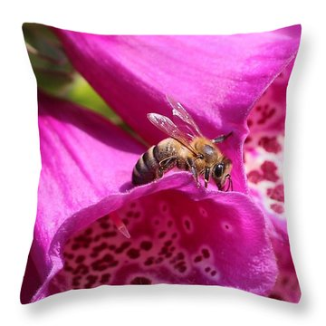 Bracing For A Good Drink Throw Pillow by Lucinda VanVleck