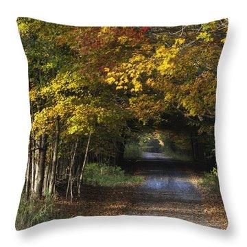 Bradford County Fall 2013 Throw Pillow