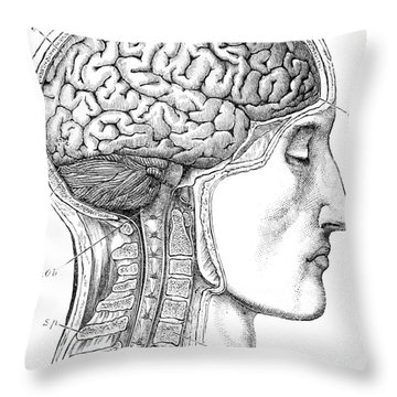 Brain From Right Side, 1883 Throw Pillow
