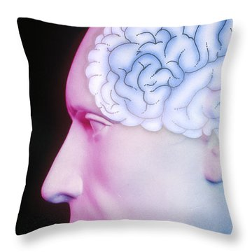 Brain Illustration Throw Pillow
