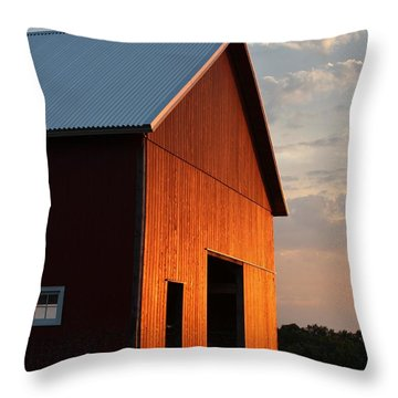 Braised Barn Throw Pillow