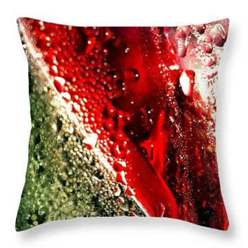 Brake Light 2 Throw Pillow
