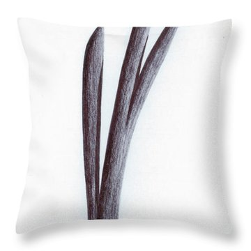 Branch Of A Fragment Of Life Throw Pillow by Giuseppe Epifani
