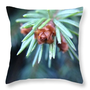 Branch Tips II Blue Spruce Throw Pillow