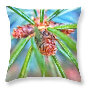 Branch Tips IIi Douglas Fir Throw Pillow