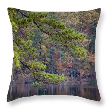Branches Throw Pillow by David Cote