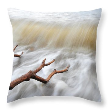 Branches In Water Throw Pillow by Randi Grace Nilsberg