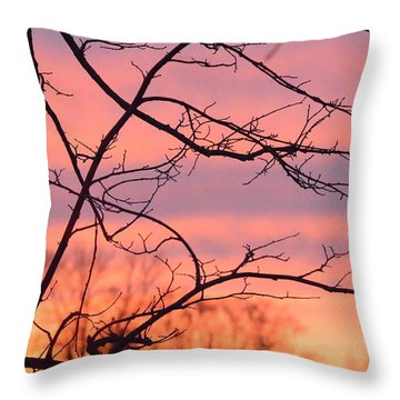 Throw Pillow featuring the photograph Branches Meet The Sky by Dacia Doroff