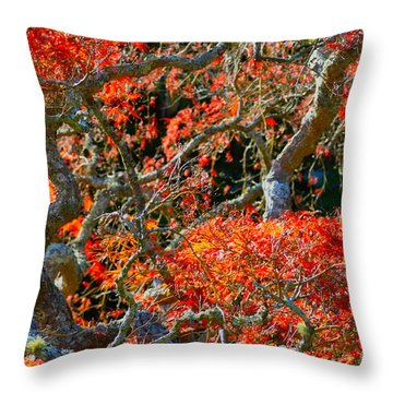 Branches Of Color Throw Pillow by Cathy Dee Janes