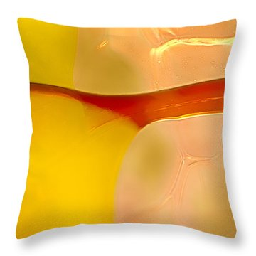 Branches Of Light Throw Pillow by Omaste Witkowski