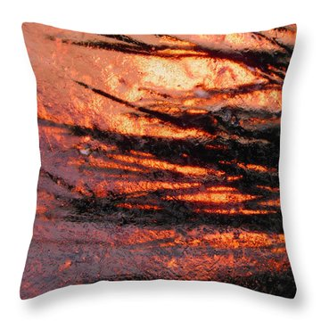 Throw Pillow featuring the photograph Branches Of Light by Sami Tiainen