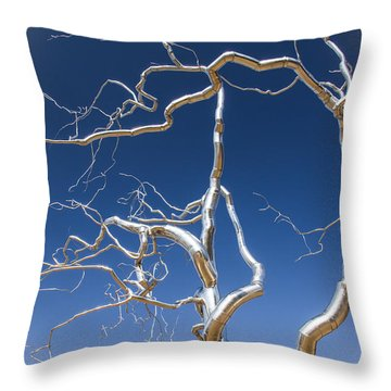Branches Of Silver Throw Pillow by Steven Bateson