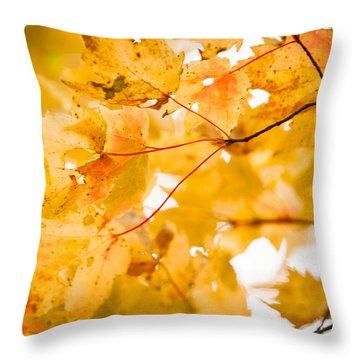 Branching Yellow Throw Pillow