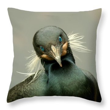 Throw Pillow featuring the photograph Brandt's Cormorant by Bob and Jan Shriner