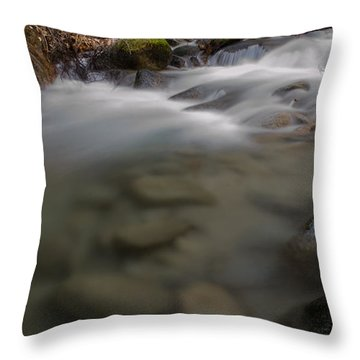 Brandy Creek Bottom Throw Pillow