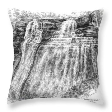 Brandywine Falls - Cuyahoga Valley National Park Throw Pillow