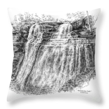Brandywine Falls - Cuyahoga Valley National Park Throw Pillow by Kelli Swan